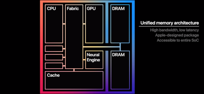 A graphic displaying the different parts of the M1 processor.